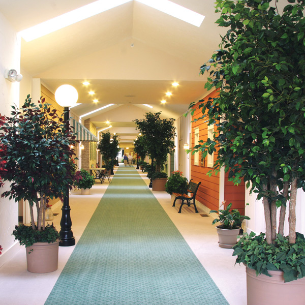 Assisted Living In Wayland, Michigan